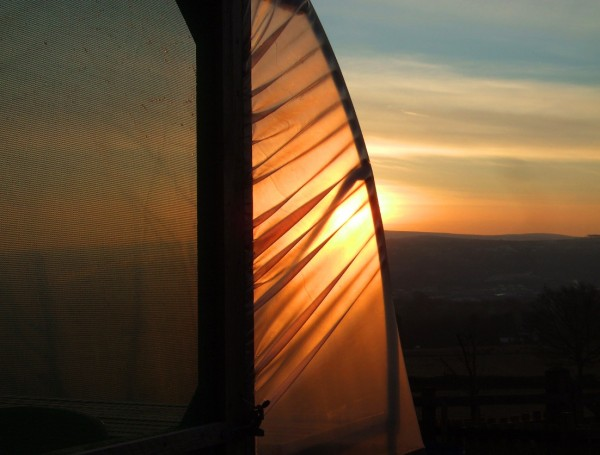 Sunrise Through The Polytunnel