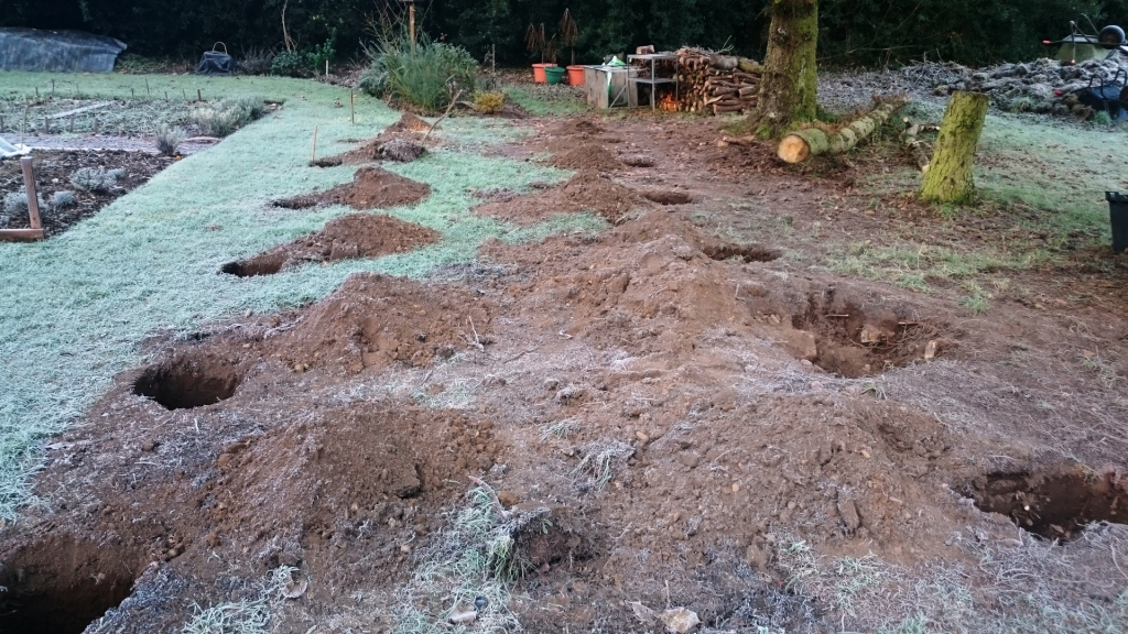 Excavated foundations for 10ft x 30ft polytunnel