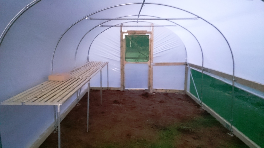 polytunnel staging