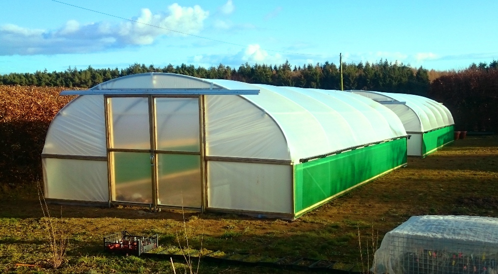 Polytunnel-At-Newcastle-University-1