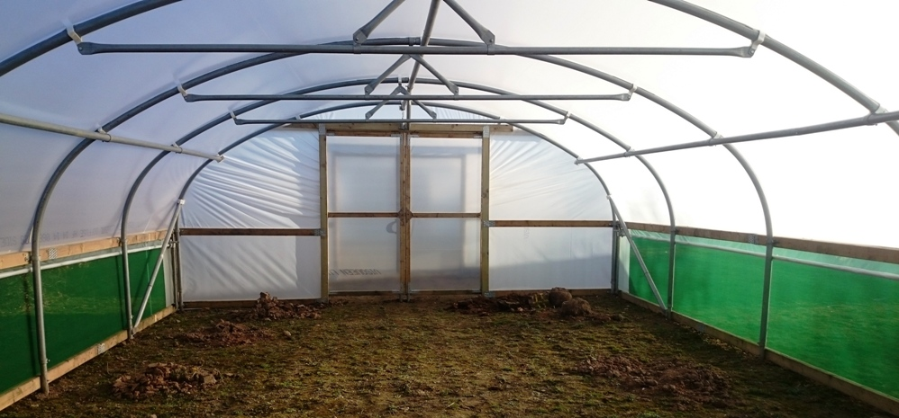 Polytunnel-At-Newcastle-University-Inside