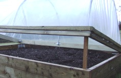 Mini-Polytunnel